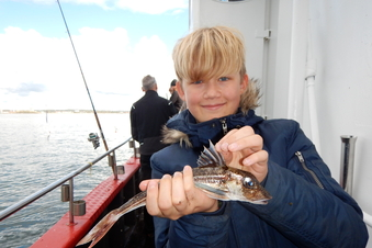 Havtur på Øresund - Minifestival (4. 10 klasse)