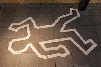 Kan du opklare et mord? (fra 0. klasse)