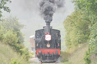 Trekantruten - tur Veteranjernbanen, Svanen og bus